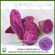 100% natural Fresh Purple Sweet Potato , Pure Purple Sweet Potato Powder , Natural Purple Sweet Potato Extract
