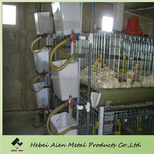 farming wire mesh layer chicken house