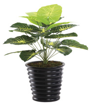 2014 hot selling SGS standard new design garden products everygreen tree bonsai artificial plant and flowers----0399