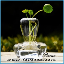 M- new deisgn great glass terrarium wholesale home decor handicraft