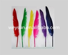 Popular goose quill ballpoint pen