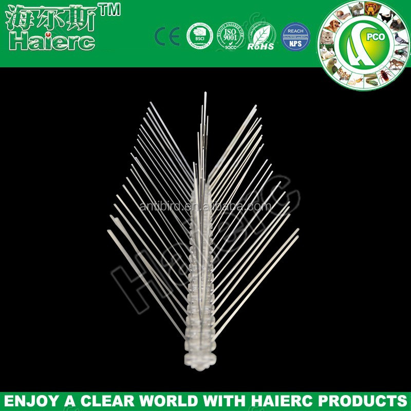 Stainless Steel Bird Spikes.jpg