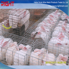 New Product Breed Rabbit Cages, Cheap Breeding Rabbit Cage