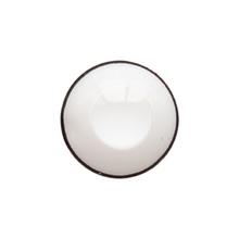 bella color lenses white color contact lens