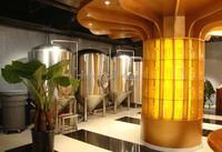 Carbonated Beverage Processing Types and 500L New Condition micro beer brewing systems