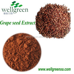 uses of grape seed extract grape seed extract health benefits grape seed extarct antioxidant