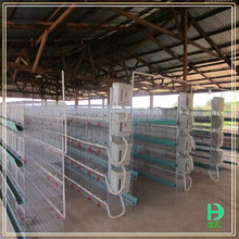 Wholesale chicken coops poultry farm house design, cages and aviaries for birds,automatic h type layer egg chicken cage