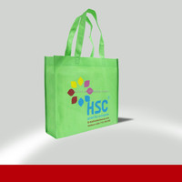 Hot Sale Eco Shopping Promotional and Gift Bag