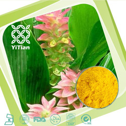 GMP factory supply Natural Turmeric Extract with Curcumin