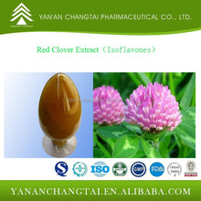 GMP factory supply Red Clover Extract