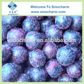 fornecer frozen blueberry