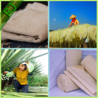 wholesale great quality woven sisal fabric with the best sisal price