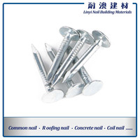 cupper nails with big flat head/clout nails supplier