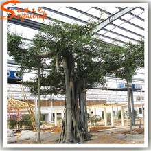 2015 china factory price a wide variety of large artificial plastic tree for sale