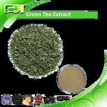 Wholesale Freeze Dried Green Tea , Top Quality Pure Green Tea Health Benefits , 100% Natural Green Tea Powder 1Kg
