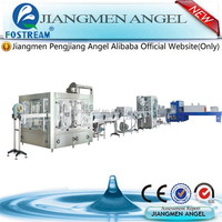 Jiangmen Angel XGF series water system mineral water production process