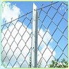 Ornamental Iron Chain Link Kennels Fence