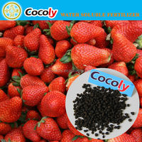 cocoly soluble fertilizer nano fertilizer small fertil plant