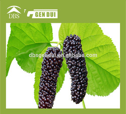 Frozen Mulberry 2014 chinese new crop frozen iqf mulberry 2014 chinese new crop frozen iqf mulberry