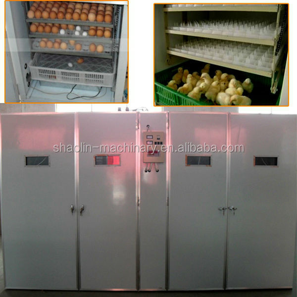 Высокое качество мини куриное яйцо инкубатор с самым лучшим обслуживанием