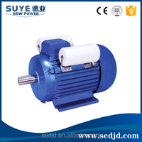 YL Series Single Phase Dual Capacitor Induction Motor
