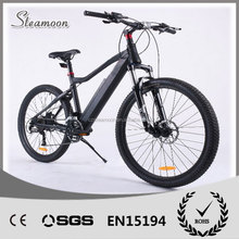 26'' mountain ebike/e bike/ electric bike fashion
