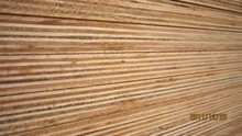 construction / decorative / packing plywood