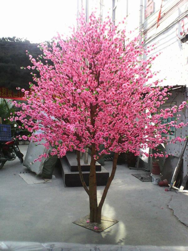 china landscape cherry trees - photo #48
