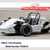 250CC ZTR Roadster/250cc Reverse Trike