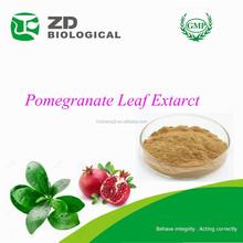Organic Herbal Pomegranate Leaf Extarct Powder