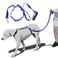 Dog Collar And Leash / Wholesale Instant Dog Trainer Leash