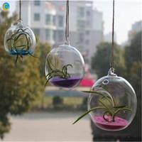 Glass Hanging Plant Terrarium Container Vase Pot Globe Ball Crystal