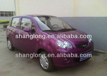 2013 hot sale LUXURY 2 seats Electric mini car