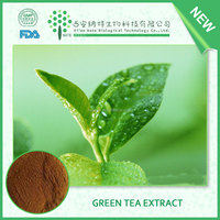 Pure Natural Green Tea Extract Tea Polyphenol 95% Catechin powder EGCG powder