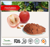 100% Natural Grape Seed Extract wholesale, Pure 95% OPC Grape Seed powder, Organic Grape seed extract