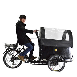 CE denmark electric closed cabin mini truck cargo tricycle for adults 2015