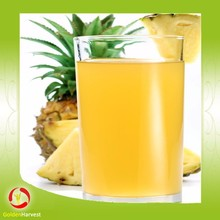 Canned aseptic pineapple juice concentrate