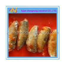 food factory for 425g canned mackerel in tomato sauce(ZNMT0043)
