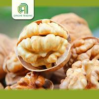 wholesale walnut meat for sale