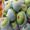 High quality EPE foam net for fruit , vegetable , rose, wine bottle