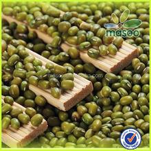 Prix pour haricots mungo verts tout variété haricots verts fèves de soja