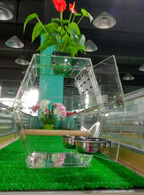 small clear acrylic bird cage with stand for sale