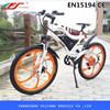 FJ-TDE05, 500w 2 wheel stand up electric scooter bike