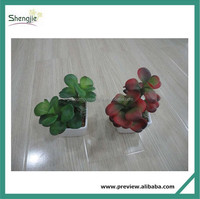 Artificial small succulent plants for living room decoration