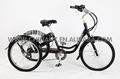 Gw 7015E 36 V 9Ah Li ion bateria triciclo