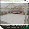 most popular products xxx video LED Starlit Dance Floor for party