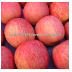 High quality 2014 new crop fresh Fuji apple.red apple