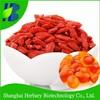 Top quality nutritional supplement anti-aging capsules goji capsules