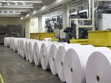 Best quality 100% wood pulp a4 paper 80 gsm rolls paper