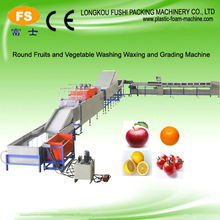 High Quality Fruit and Vegetable Cleaning and Sorting Machine